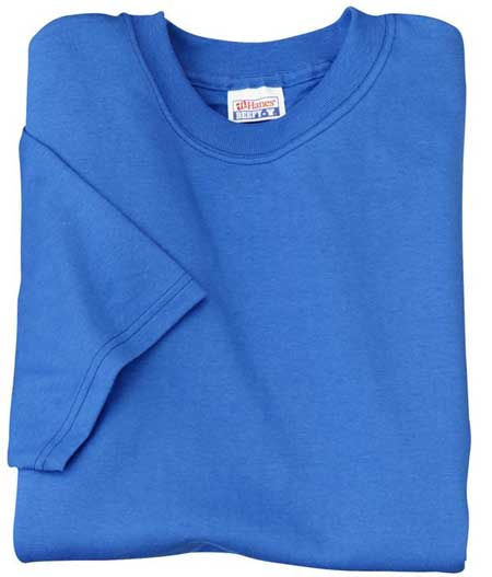 Hanes Beefy-T shirt